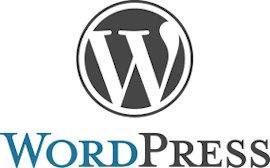 izdelava-strani-wordpress