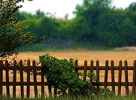 dvoriščna ograja
